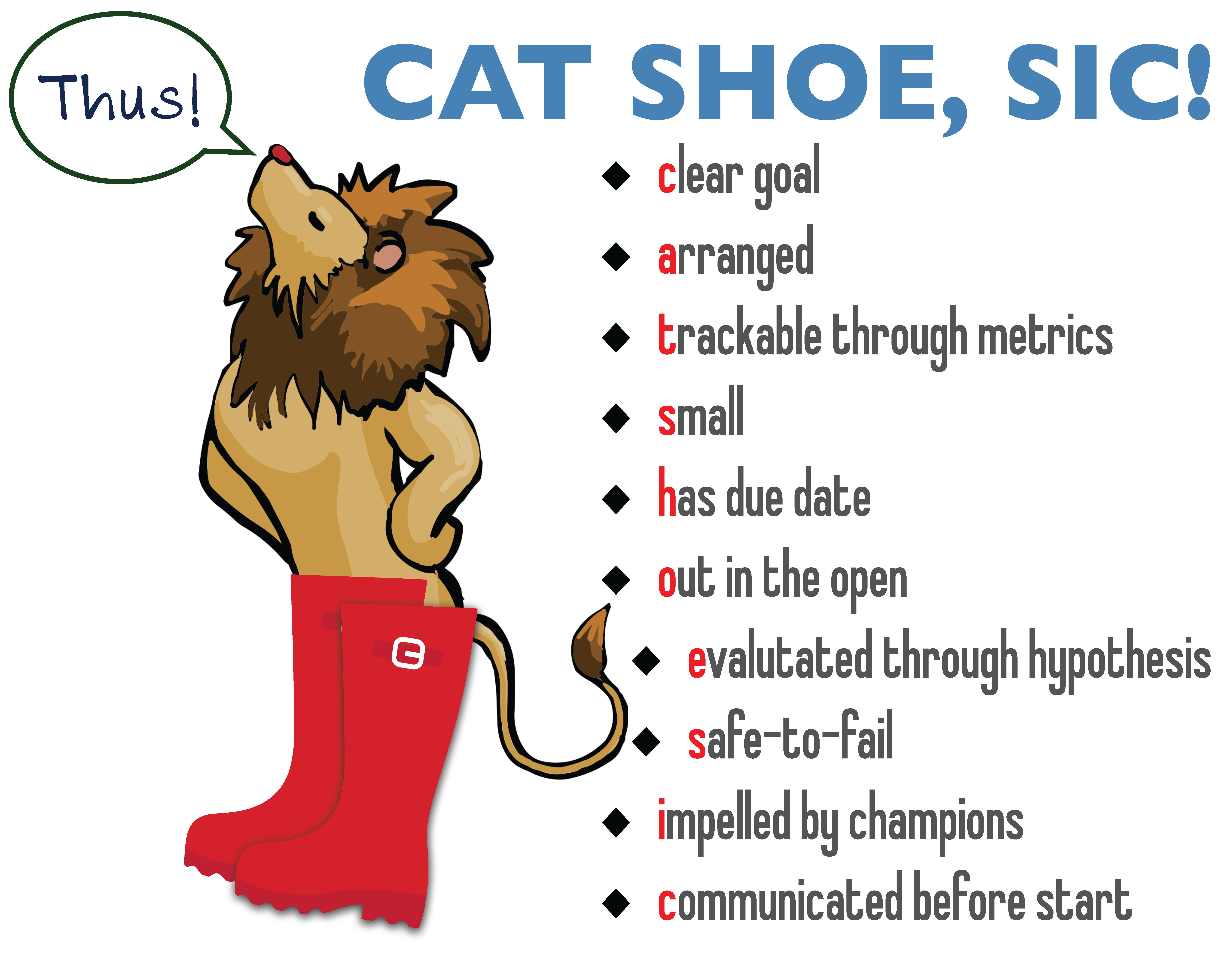 cat shoe sic